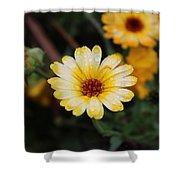 Pocket Full Of Sunshine Shower Curtain