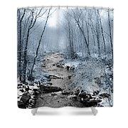 Pocono Mountain Winter Shower Curtain