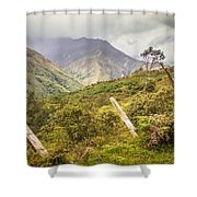 Podocarpus National Park Shower Curtain