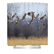 Poetry In Motion Shower Curtain