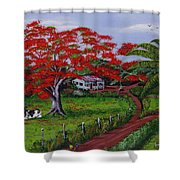 Poinciana Blvd Shower Curtain