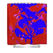 Poinciana Flower 4 Shower Curtain