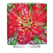 Poinsettia For Christmas Shower Curtain