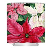Poinsettia Pastel Shower Curtain