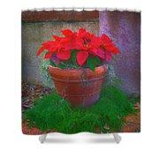 Poinsettia Pot Shower Curtain