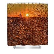 Point Betsie Light Shower Curtain
