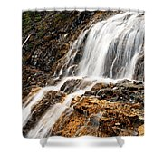 Point Lace Falls 1 Shower Curtain