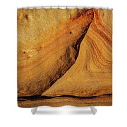 Point Lobos Abstract 108 Shower Curtain