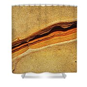 Point Lobos Abstract 111 Shower Curtain