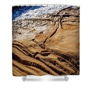 Point Lobos Abstract Shower Curtain