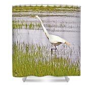 Point Pinole Regional Shoreline 4 Cropped Shower Curtain
