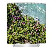 Point Reyes National Seashore Coast On Pacific Ocean Shower Curtain