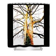Pointillised Tree Shower Curtain