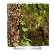 Poison Ivy Climbing Oak Tree Trunk Shower Curtain
