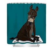 Poker Donkey Shower Curtain