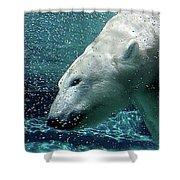 Polar Bear Shower Curtain