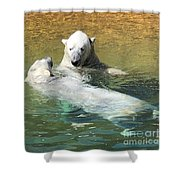 Polar Bears Shower Curtain by Laurie Lundquist