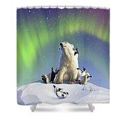 Polar Opposites Shower Curtain