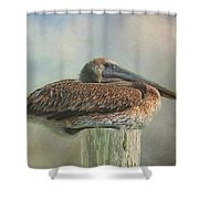 Pole Sitting Shower Curtain