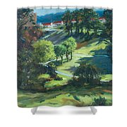 Polin Springs Shower Curtain