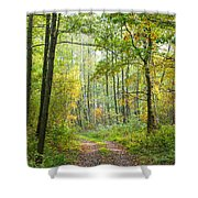 Polish Forest 2 Shower Curtain