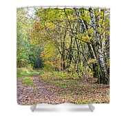 Polish Forest 1 Shower Curtain