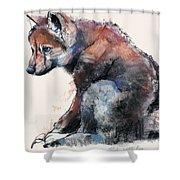 Polish Wolf Pup Shower Curtain