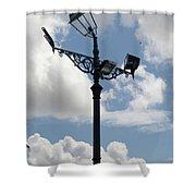 Polite Lamppost Shower Curtain