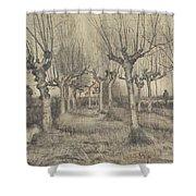 Pollard Birches Nuenen  March 1884 Vincent Van Gogh 1853  1890 Shower Curtain