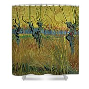 Pollarded Willows And Setting Sun Shower Curtain