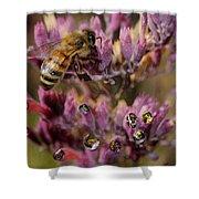 Pollen Bees Shower Curtain
