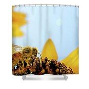 Pollen-coated Honey Bee On A Sunflower Shower Curtain