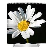 Pollen Collection Shower Curtain