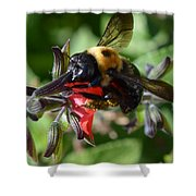 Pollen Covered Bee Shower Curtain
