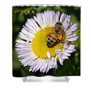 Pollen Harvest Shower Curtain