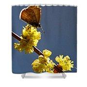 Pollen Pickup Shower Curtain