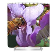 Pollinating 5 Shower Curtain