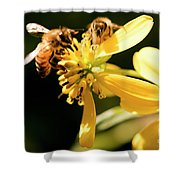 Pollinating Bees Shower Curtain