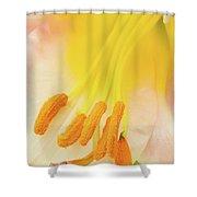 Pollinator's Heaven Shower Curtain
