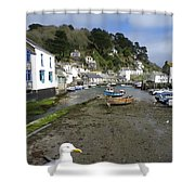 Polperro Harbour Cornwall And Seagull Shower Curtain