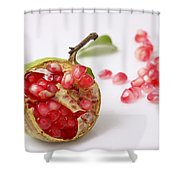 Pomegranate And Seeds  Shower Curtain