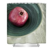 Pomegranate Shower Curtain by Priska Wettstein