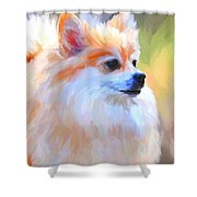 Pomeranian Portrait Shower Curtain