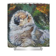 Pomeranian Puppy Autumn Leaves Shower Curtain