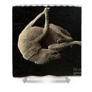 Pompeii: Plaster Cast Shower Curtain