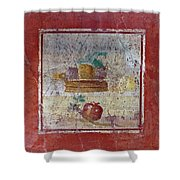 Pompeii Pomegranate Still Life Fresco 1 Shower Curtain
