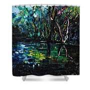 Pond 944 Shower Curtain