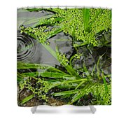 Pond Abstract I Shower Curtain