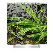 Pond Abstract II Shower Curtain