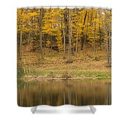 Pond And Woods Autumn 1 Shower Curtain